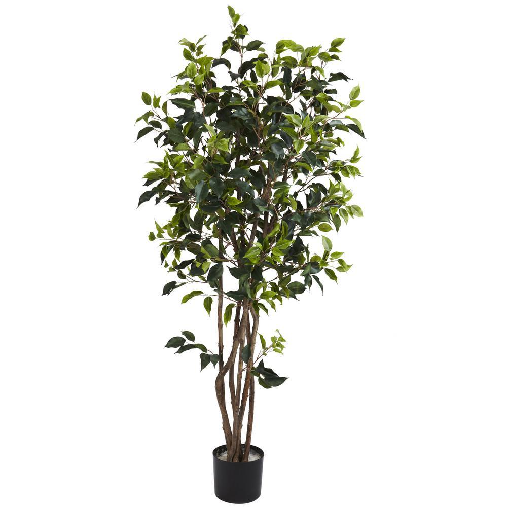 5 ft. Green Ficus Bushy Silk Tree