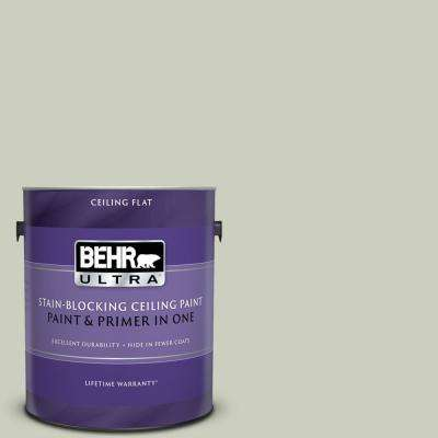 1 gal. #PPU10-11 Sliced Cucumber Ceiling Flat Interior Paint and Primer in One