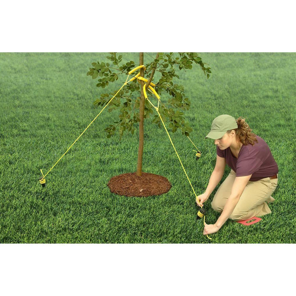 Vigoro Tree Staking Kit with Rope and Stakes, Heavy Duty, UV Resistant