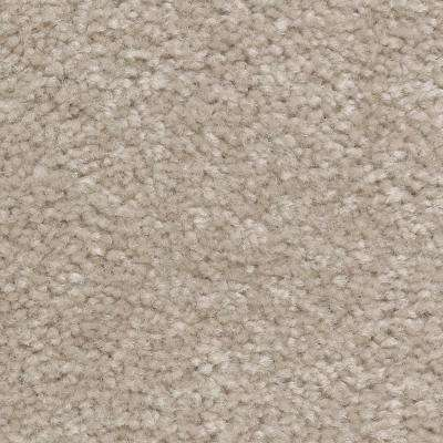 Carpet Sample - Best Wishes I - Color Woodsy Texture 8 in. x 8 in.