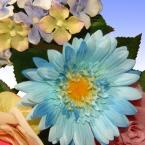 National Tree Company 32.5 in. Rose, Gerbera and Hydrangea Swag in Blue/Pink