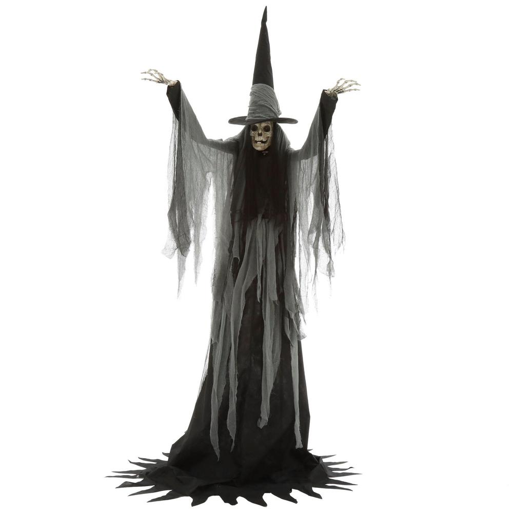 Halloween Macabre Witch Skeleton Animated Haunted House