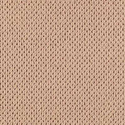 Carpet Sample-Deliverable - Color Torch Light Loop 8 in. x 8 in.