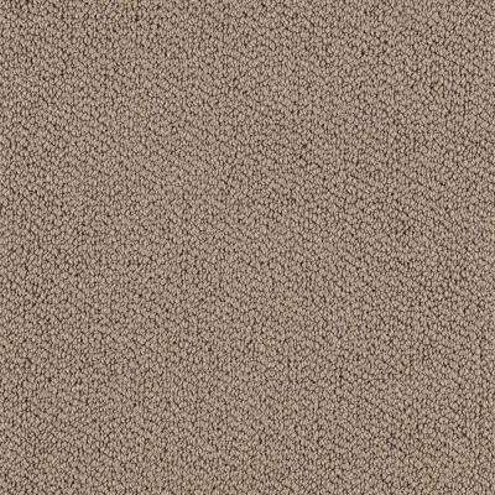 Lifeproof Lower Treasure Color Dockside Pattern 12 Ft Carpet 0547d 36 12 The Home Depot