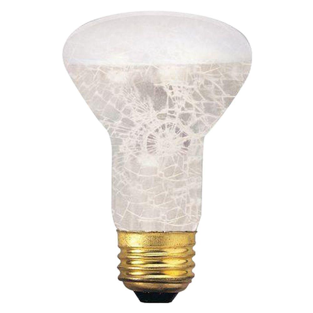 Bulbrite 50-Watt Incandescent R20 Light Bulb (5-Pack)