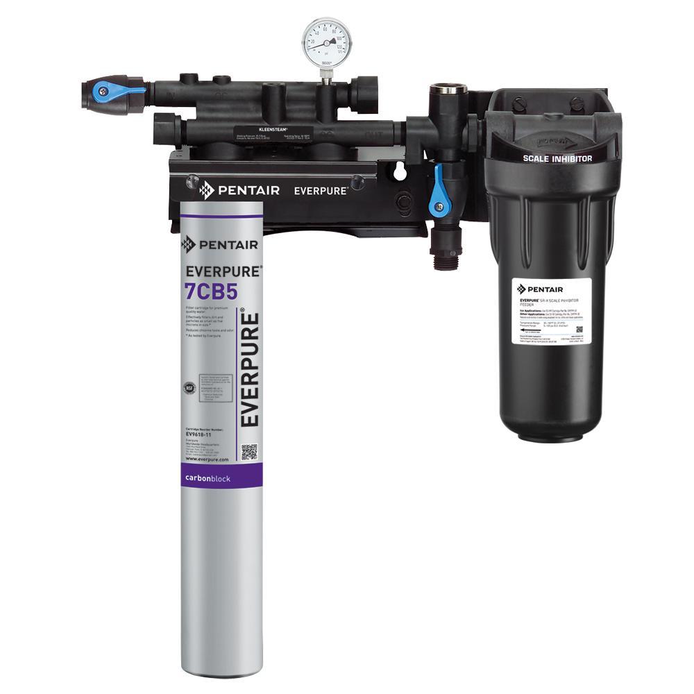 Kleensteam II Single Steamer Water Filtration System