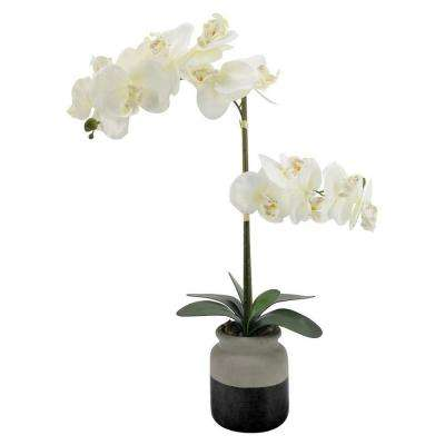 23 in. Faux Orchid Flower Pot in White