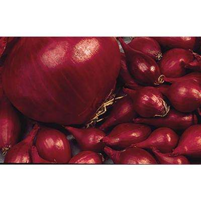 Red Onion Set (80-Bulbs Per Package)