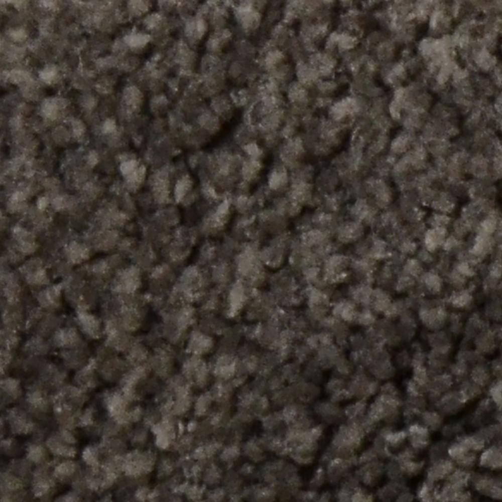 Carpet Sample - Gemstone II - Color Prospect Texture 8 in. x 8 in.