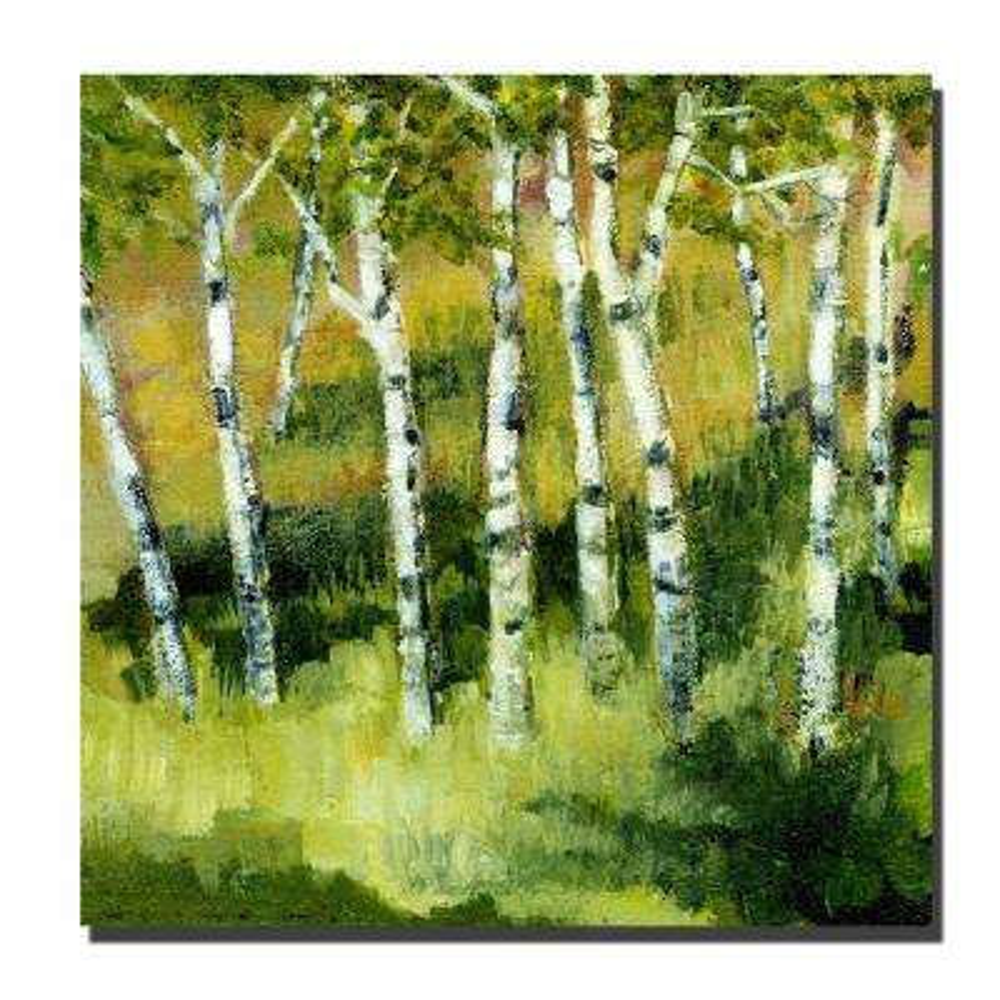 24 in. x 24 in. Birch Trees Canvas Art