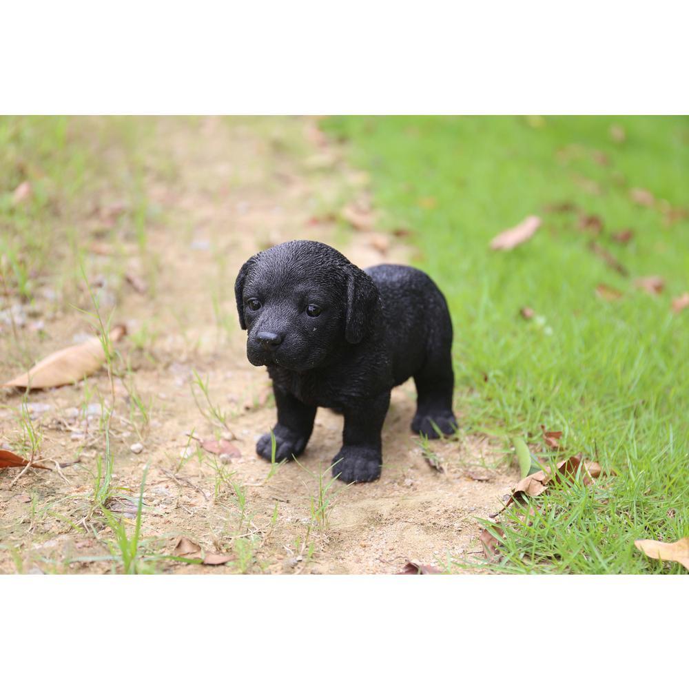 Hi Line Gift Yellow Golden Retriever Puppy Sitting 87771 07 The