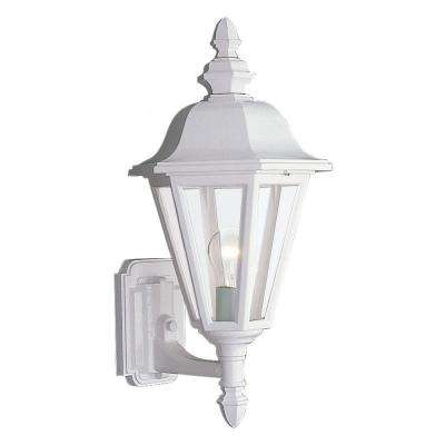 Brentwood 1-Light White Outdoor Wall Fixture