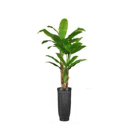 93 in. Tall Banana Tree with Real Touch Leaves in Planter