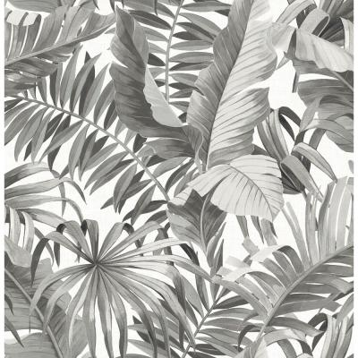 56.4 sq. ft. Alfresco Black Palm Leaf Wallpaper