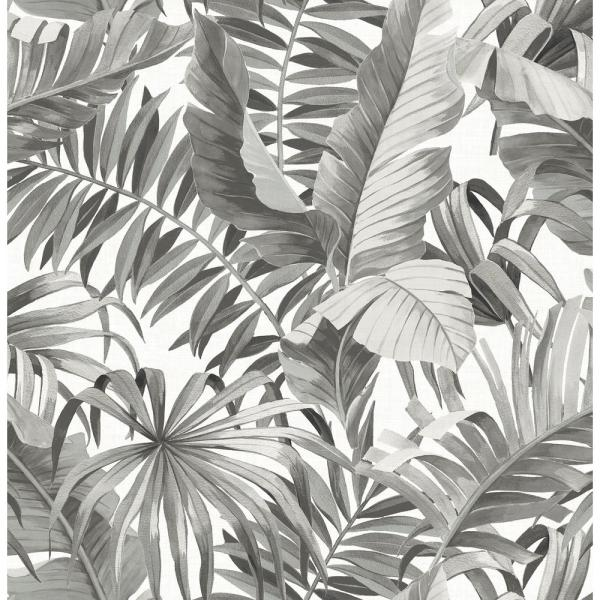 564 Sq Ft Alfresco Black Palm Leaf Wallpaper