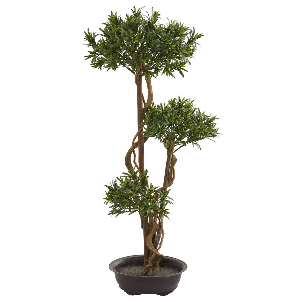 Indoor 46 in. Bonsai Styled Podocarpus Artificial Tree on pleomele house plant, sansevieria house plant, eucalyptus house plant, ficus house plant, fittonia house plant, peperomia house plant, variegated ivy house plant, philodendron house plant, iris house plant, croton house plant, zamia house plant, holly house plant, asparagus house plant, olive house plant, lantana house plant, rhododendron house plant, camellia house plant, araucaria house plant, ardisia house plant, bamboo house plant,