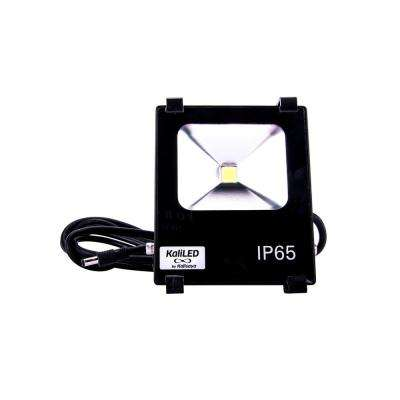 KaliLED 10-Watt Flood Light