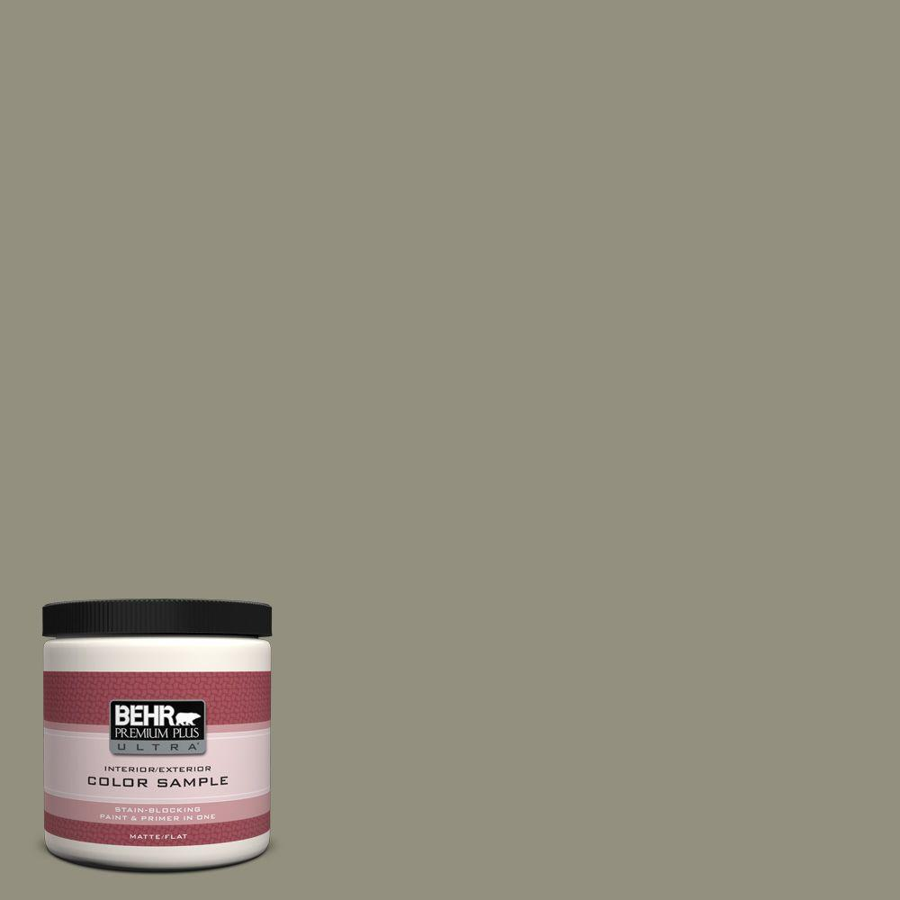 BEHR Premium Plus Ultra 8 oz. #N350-5 Muted Sage Interior/Exterior Paint Sample