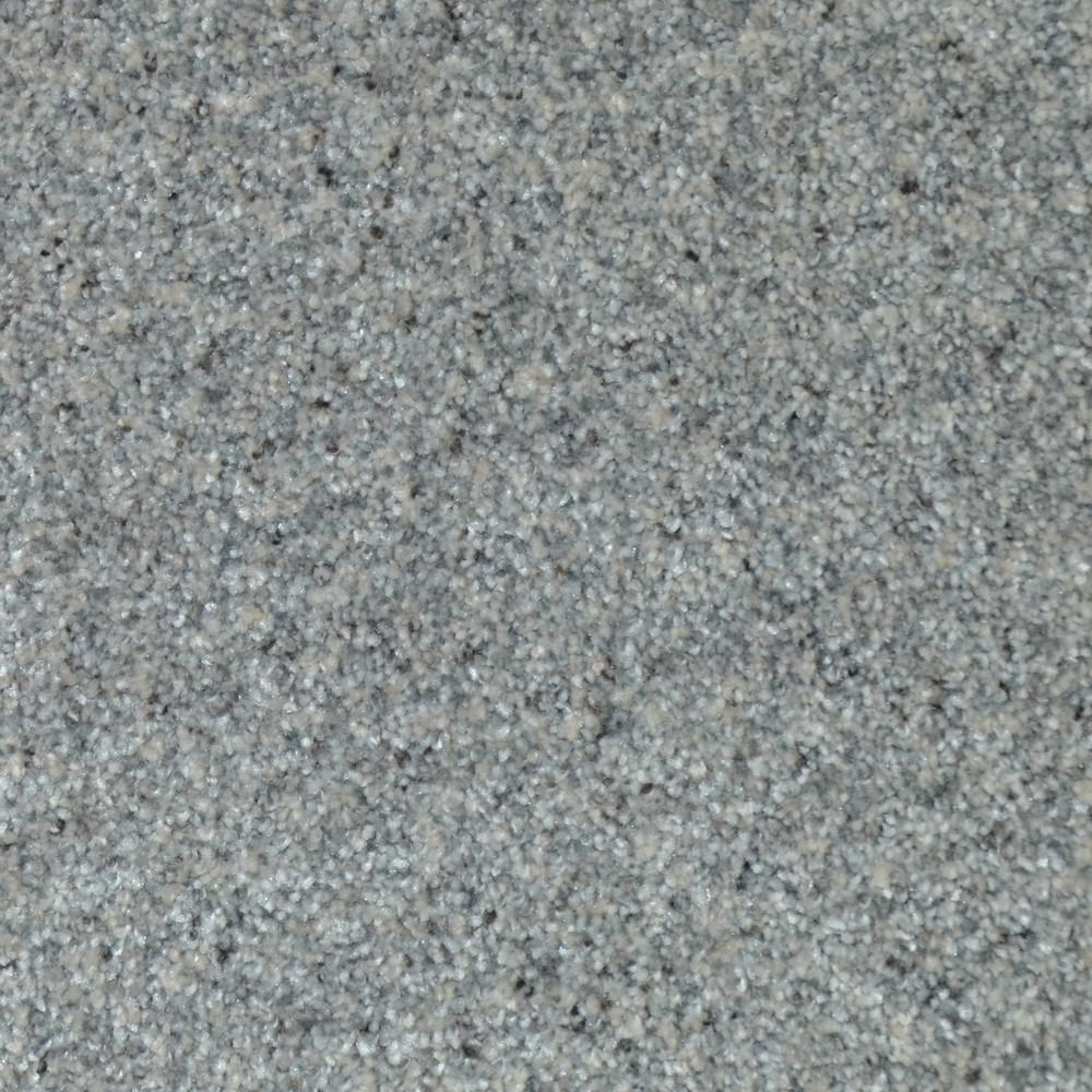 Home Decorators Collection Carpet Sample All The Best I Color Stockton Texture 8 In