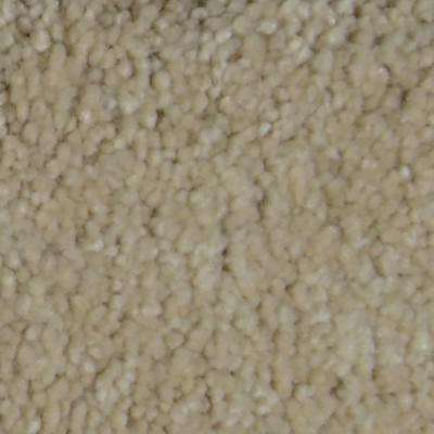 Carpet Sample - Gemstone I - Color Lucky Texture 8 in. x 8 in.