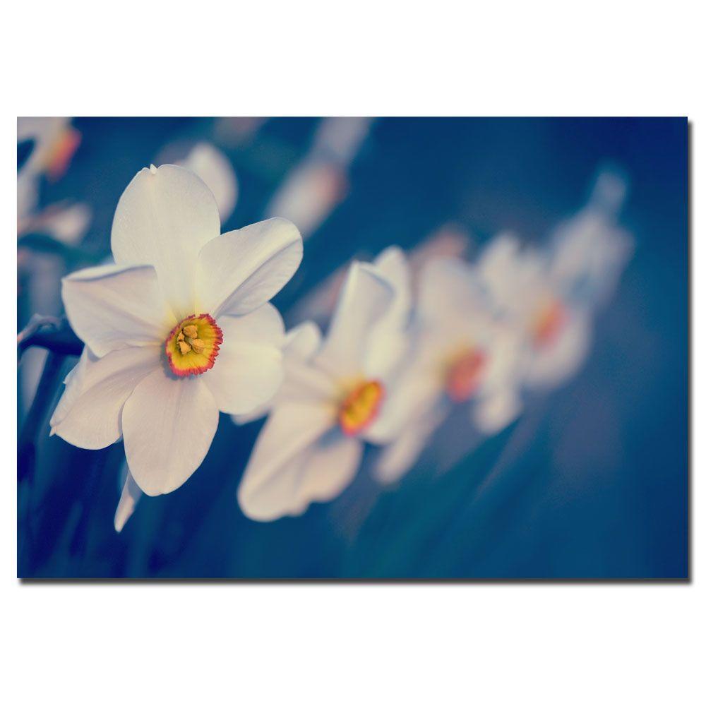 Trademark Fine Art 16 in. x 24 in. Springtime Scent Canvas Art-DISCONTINUED