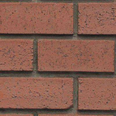 Red Brick 8 in. x 8 in. x 3/4 in. Faux New Brick Stone Sample