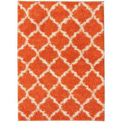 Plush Moroccan Trellis Design Orange 3 ft. x 5 ft. Shag Area Rug