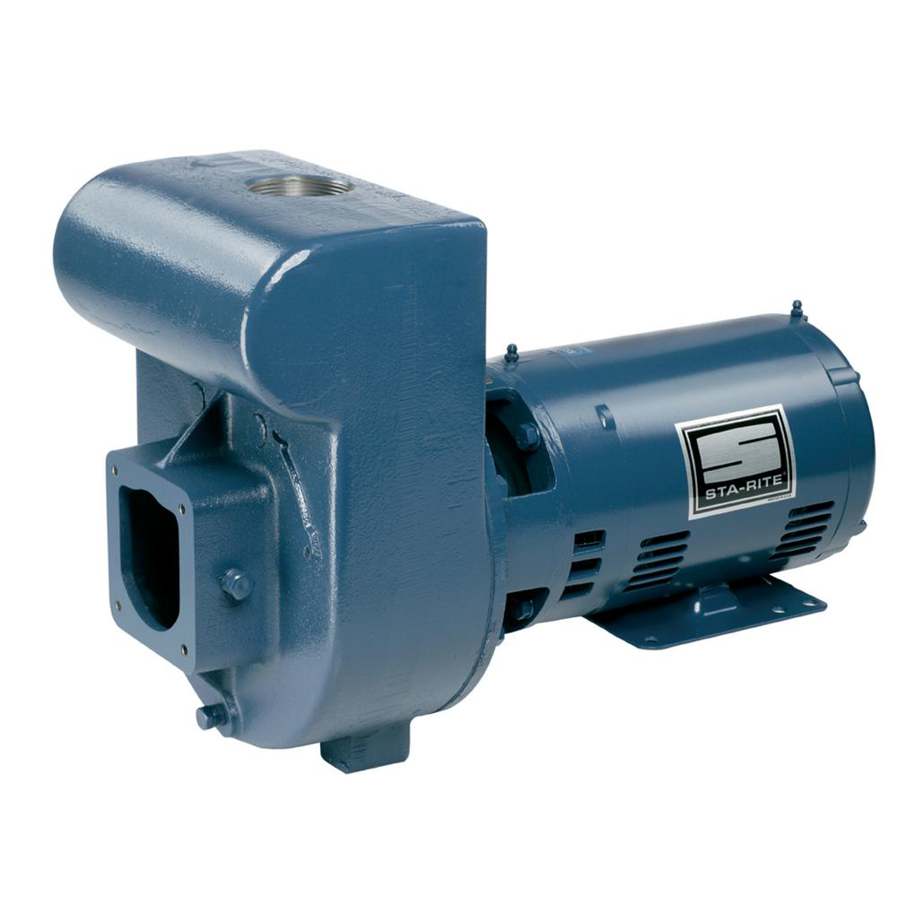 D-Series 3 HP Single Phase Medium Head Pump with 2 in. Pl...