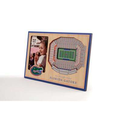 NCAA Florida Gators Team Colored 3D StadiumView with 4 in. x 6 in. Picture Frame