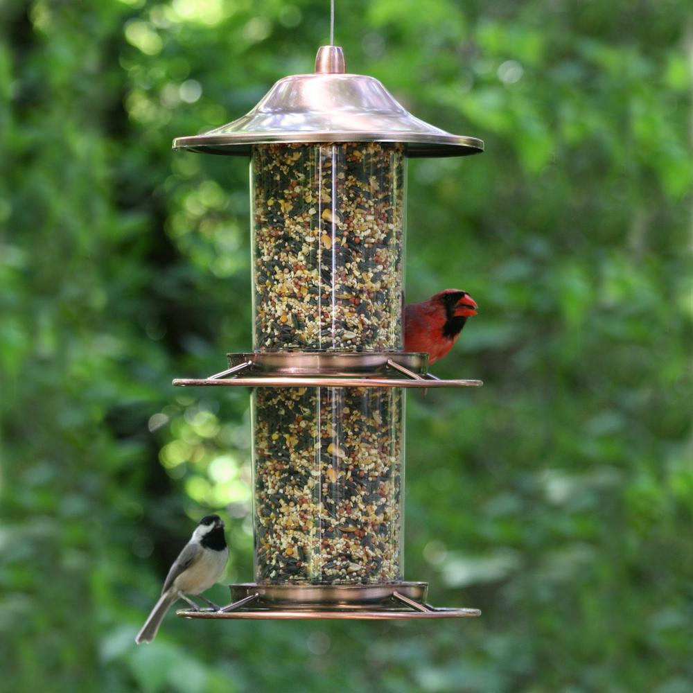 "2 MASSIVE 16/"" Plastic Wild Garden Bird Seed Feeder 6 Feeding Station Ports Perch"