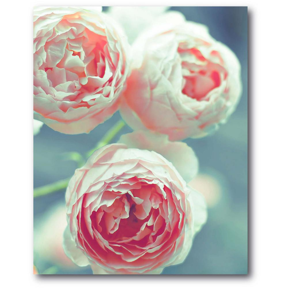 Courtside Market 3-Peonies 16 in. x 20 in. Gallery-Wrapped Canvas Wall Art, Multi Color was $70.0 now $38.93 (44.0% off)