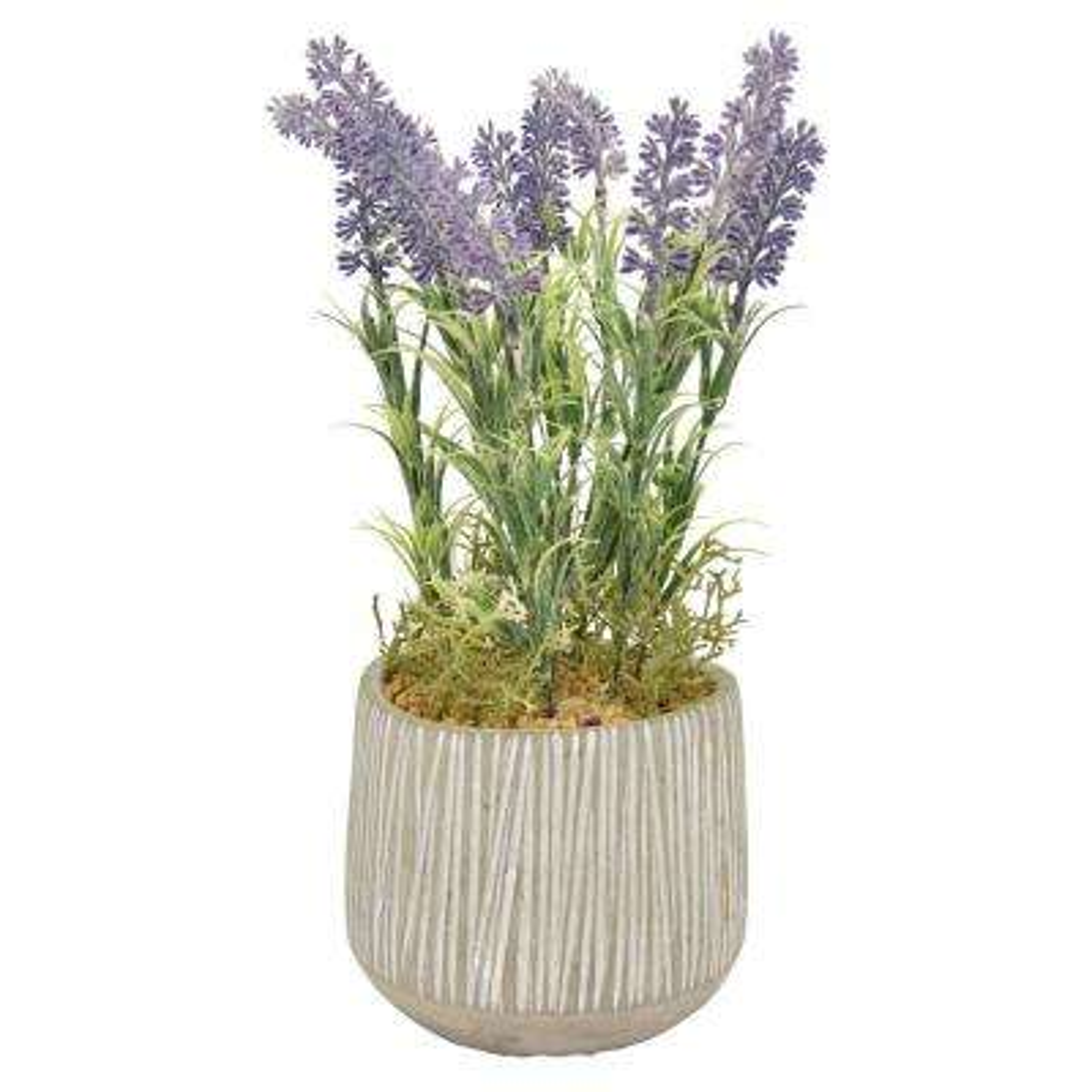 5.5 in. x 5.5 in. Green Faux Lavender Pot
