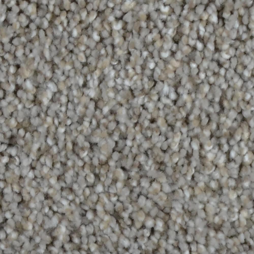 Reign - Color Highland Texture 12 ft. Carpet