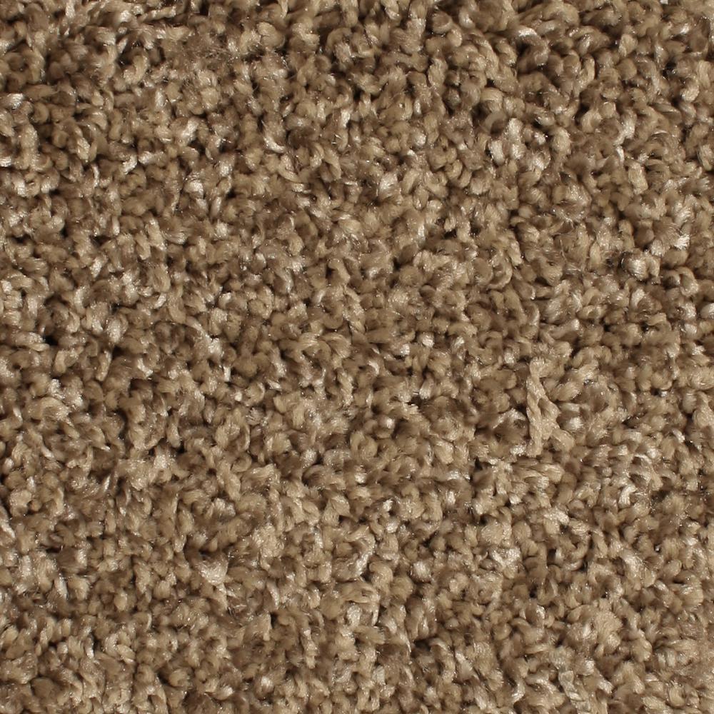 Home Decorators Collection Carpet Sample Pioneer Color