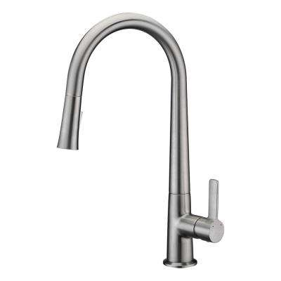 Orbital Single-Handle Pull-Down Sprayer Kitchen Faucet in Brushed Nickel
