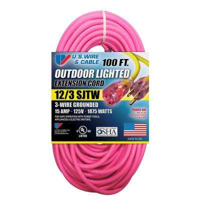 100 ft. 12/3 Fluorescent Lighted Extension Cord, Pink