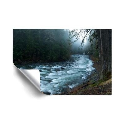 River Beach and Nautical Removable Wall Mural