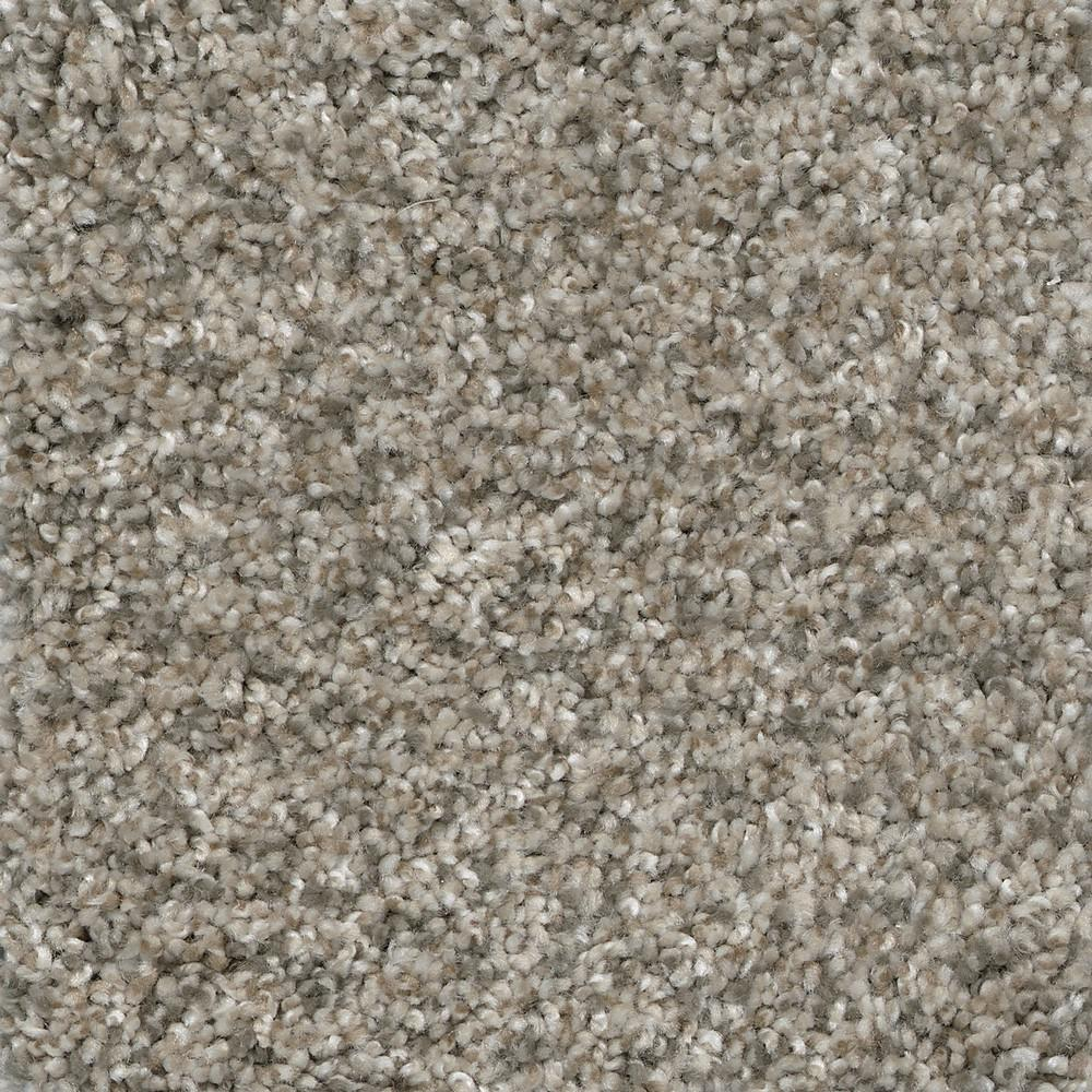 Home Decorators Collection Trendy Threads II - Color Hip Texture 12 ft. Carpet