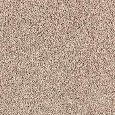 Carpet Sample - Wesleyan II - Color Frosty Spice Texture 8 in. x 8 in.