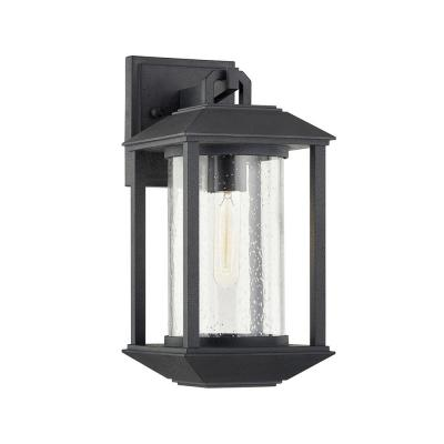 Mccarthy Weathered Graphite 1-Light Wall Sconce with Clear Seeded Glass Shade