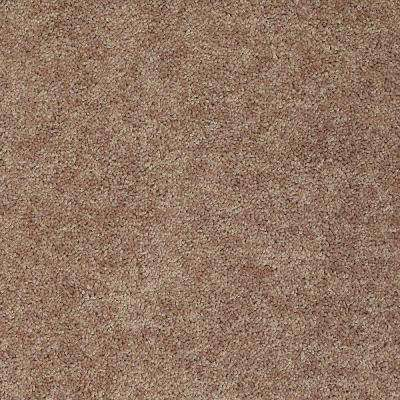 Carpet Sample - Palmdale I 12 - In Color Toasty Warm 8 in. x 8 in.