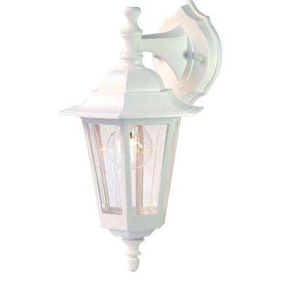 Tidewater Collection 1-Light Textured White Outdoor Wall-Mount Light Fixture