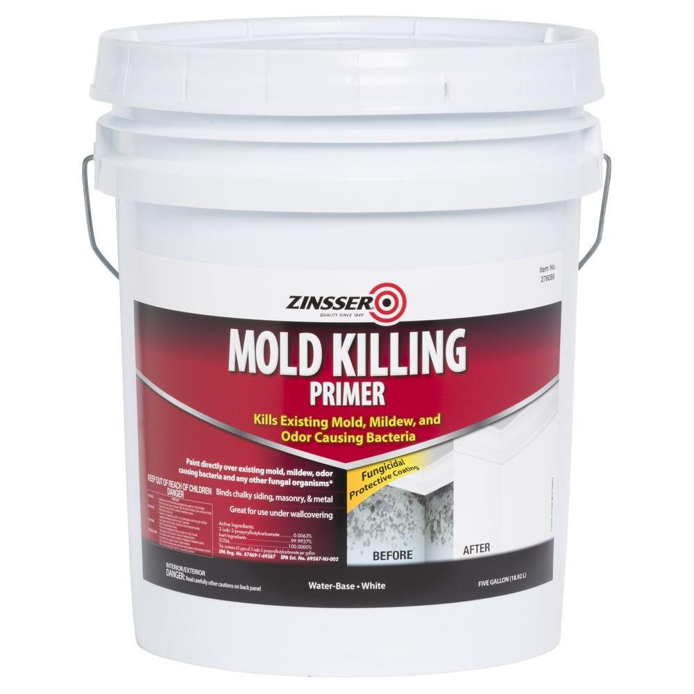 Mold Killing Interior Exterior Primer
