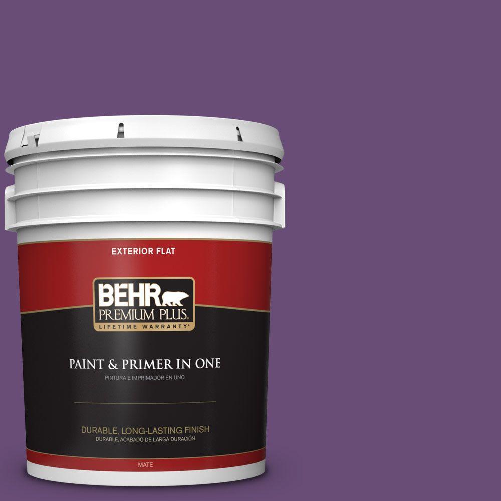 5-gal. #660B-7 Exotic Purple Flat Exterior Paint