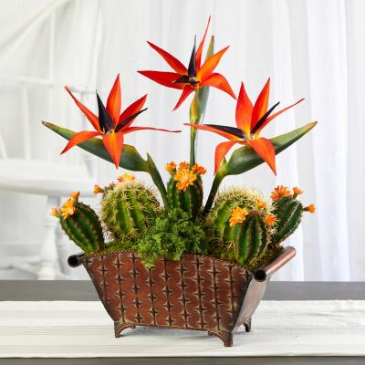 21 in. Bird of Paradise and Cactus Artificial Plant in Metal Planter