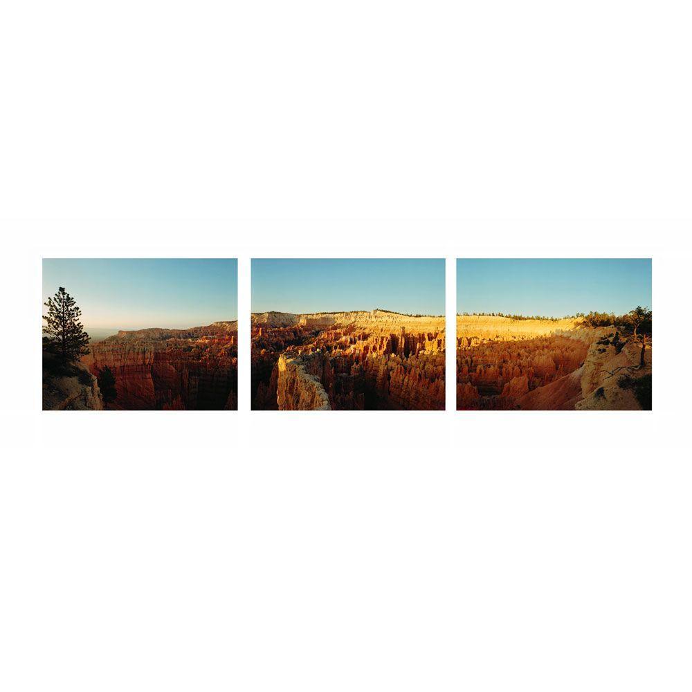 Trademark Fine Art 8 in. x 24 in. Triptych Canvas Art