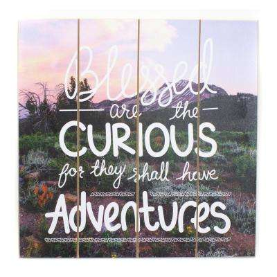 "16 in. W x 16 in. H ""Blessed Are the Curious"" by JLB Printed Wall Art"