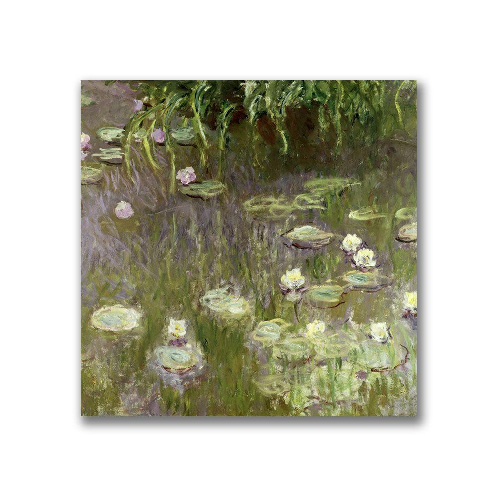 Trademark Fine Art 14 in. x 14 in. Waterlilies at Midday Canvas Art