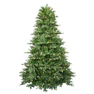7.5 ft. Pre-Lit LED Royal Fraser Fir Artificial Christmas Tree with Warm White Lights