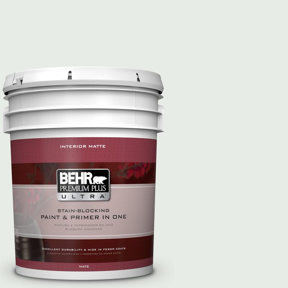 5 gal. #BWC-19 Queen Anne's Lace Matte Interior Paint and Primer